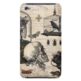 Modern Vintage Halloween Garden Barely There iPod Cases