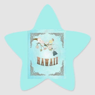 Modern Vintage Hawaii State Map – Aqua Blue Star Stickers