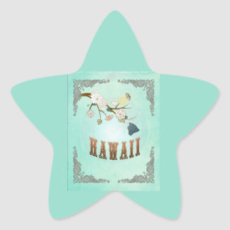 Modern Vintage Hawaii State Map – Turquoise Blue Star Stickers