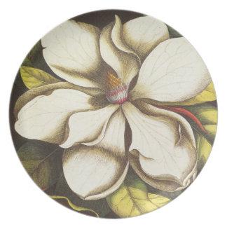 modern vintage magnolia dinner plates
