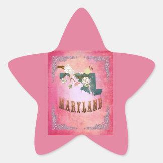 Modern Vintage Maryland State Map- Candy Pink Star Sticker