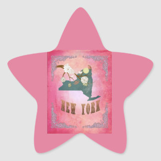 Modern Vintage New York State Map- Candy Pink Star Stickers