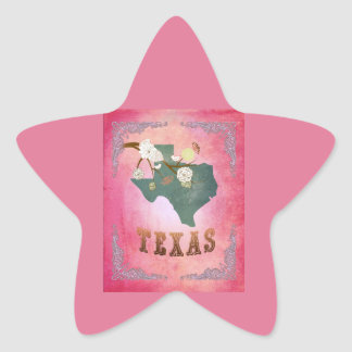 Modern Vintage Texas State Map- Candy Pink Star Sticker