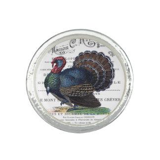 modern vintage Turkey