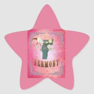 Modern Vintage Vermont State Map - Candy Pink Star Stickers