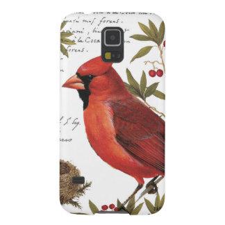 modern vintage winter cardinal galaxy s5 cover