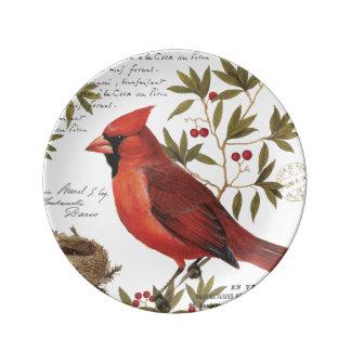 modern vintage winter cardinal porcelain plate