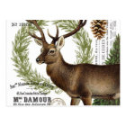 modern vintage woodland winter deer postcard