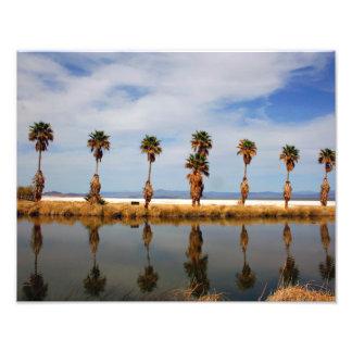 Mojave Desert 11x14 Landscape Photograph