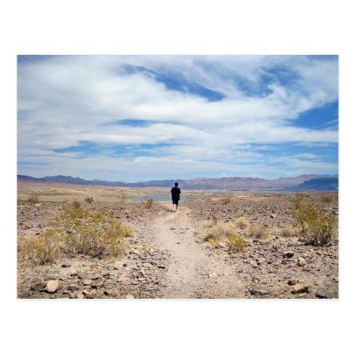 Mojave Desert / Lake Mead Post Card