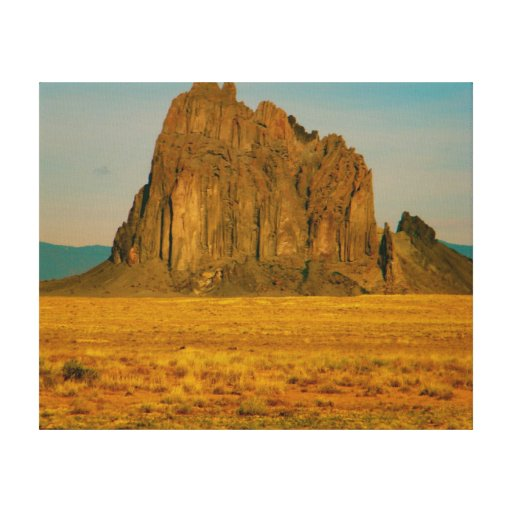 Mojave Desert- New Mexico Gallery Wrapped Canvas