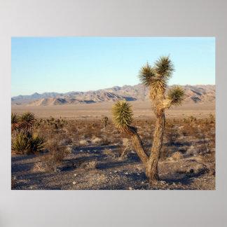 Mojave Desert scene 01 Poster
