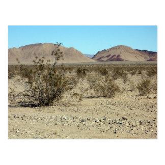 Mojave Desert scene 02 Postcard