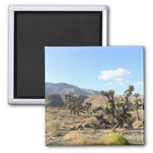 Mojave Desert scene 06 Fridge Magnet