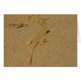 Mojave Fringe-Toed Lizard Desert Photography Greeting Card