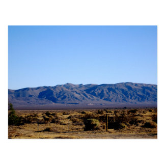 Mojave Morning Post Cards