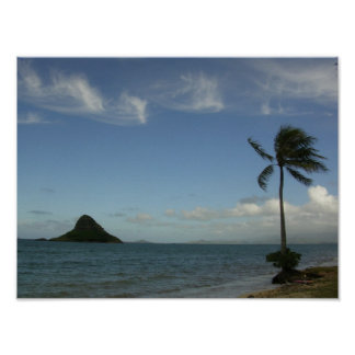 MOKOLI'I ISLAND O'AHU PRINT