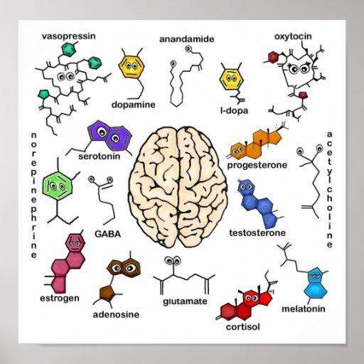 Molecules Galore! Poster