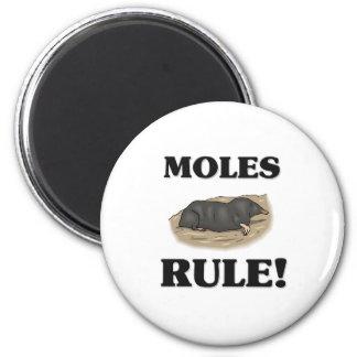 MOLES Rule! 6 Cm Round Magnet