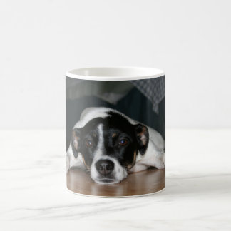 """Molli"" Rat Terrier dog Mug"