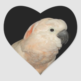 Moluccan Cockatoo Love Valentine Design Heart Sticker