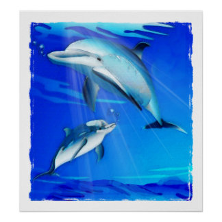 Mom and Baby Dolphin Poster
