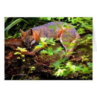 MOM FOX TAKES A NAP CARD