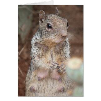 Mom Squirrel Humorous Card