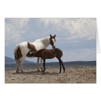 Momma and Baby Mustang Card