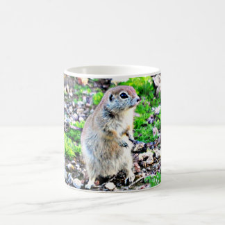 Momma Ground Squirrel Coffee Cup/Mug Coffee Mug
