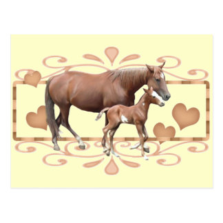 Mommy And Foal Postcard