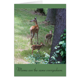 Moms are the same everywhere card