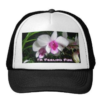 Moms Tropic Fashion - combo set - hat/cap Cap