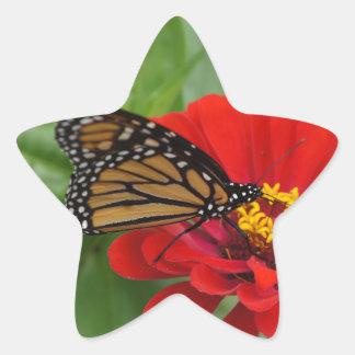 Monarch Beauty Star Sticker