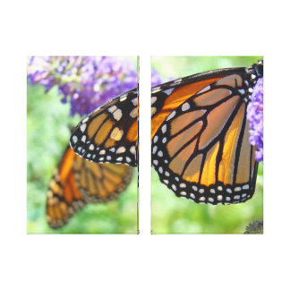 Monarch Butterflies Canvas panel art prints Gallery Wrapped Canvas