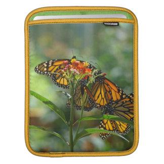 Monarch Butterflies Garden iPAD Sleeves custom