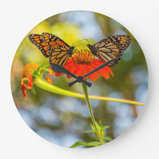 Monarch Butterflies on a Wildflower Clock