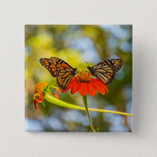 Monarch Butterflies on Wildflowers 15 Cm Square Badge