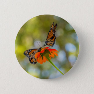 Monarch Butterflies on Wildflowers 6 Cm Round Badge