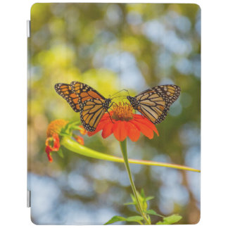 Monarch Butterflies on Wildflowers iPad Cover