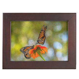 Monarch Butterflies on Wildflowers Keepsake Box
