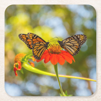Monarch Butterflies on Wildflowers Square Paper Coaster