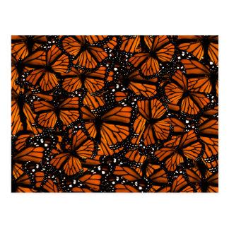 Monarch Butterflies Swarming Post Card