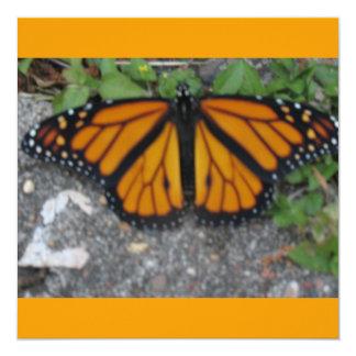 Monarch Butterfly 13 Cm X 13 Cm Square Invitation Card