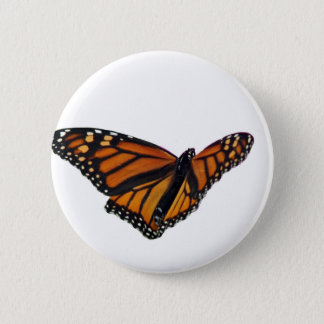 Monarch butterfly 6 cm round badge