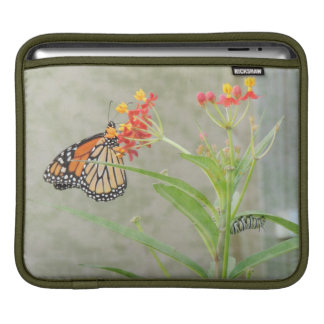 Monarch Butterfly and Caterpillar iPad Sleeve