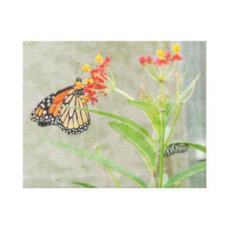 Monarch Butterfly and Caterpillar Wrapped Canvas Canvas Print