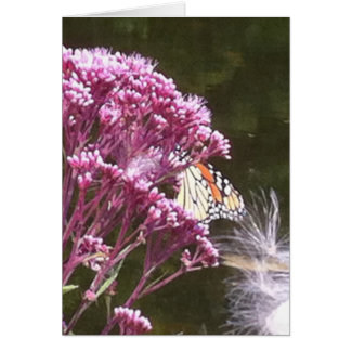 Monarch Butterfly and Milkweed Greeting Card