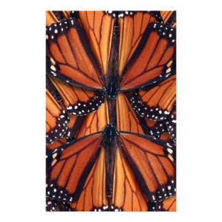 monarch butterfly art stationery