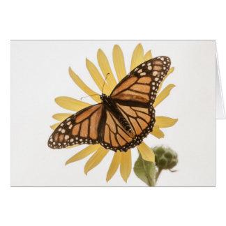 Monarch Butterfly Card